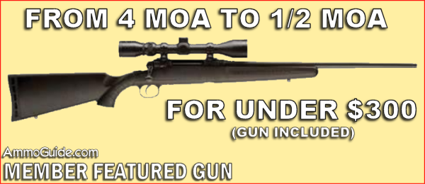 FROM 4 MOA TO 1/2 MOA - FOR UNDER $300 (gun included)